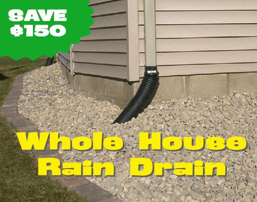 Whole House Rain Drain Special